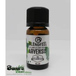 BlendFEEL Menta Arvensis - Aroma - 10 ml